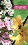 Красивоцветущие кустарники (форзиция, вейгела, чубушник, дейция) А. Г. Куклина