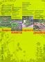 Большая книга садового дизайна. Просто о сложном